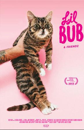 film reviews | movies | features | BRWC Lil Bub & Friendz