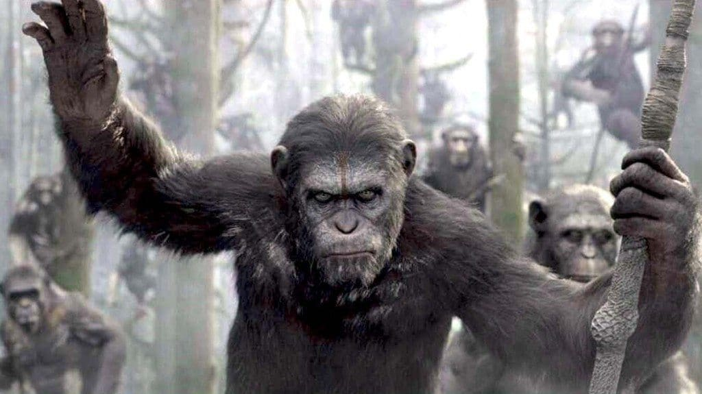 film reviews | movies | features | BRWC DAWN OF THE PLANET OF THE APES - WORLDWIDE TRAILER DEBUT