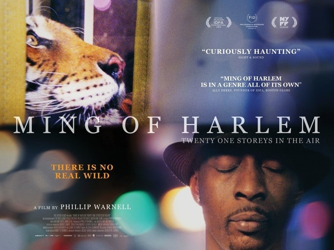 film reviews | movies | features | BRWC The BRWC Review: Ming Of Harlem