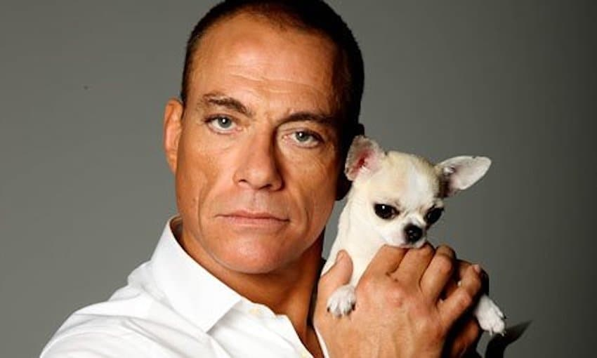 film reviews | movies | features | BRWC Jean-Claude Van Damme & Other Classic Action Stars