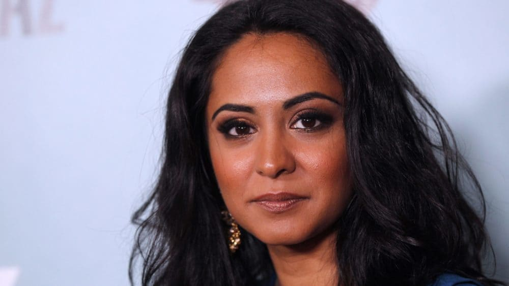 film reviews | movies | features | BRWC FORTITUDE: A Chat With Parminder Nagra