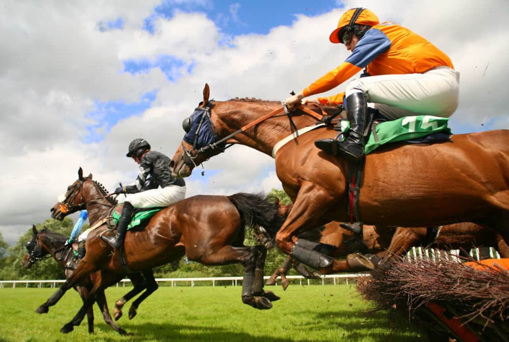 film reviews | movies | features | BRWC Bits & Pieces: The Grand National Edition