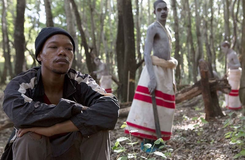 CamFF Review: The Wound