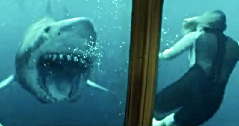 47 Meters Down: Uncaged - The BRWC Review
