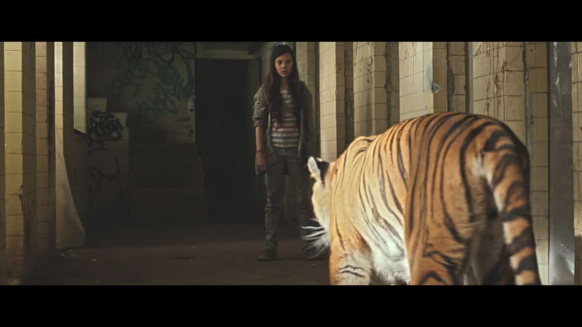 Tigers Are Not Afraid: Review